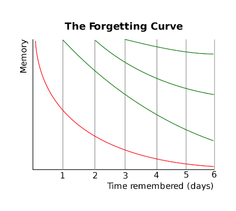 The forgetting curve 2